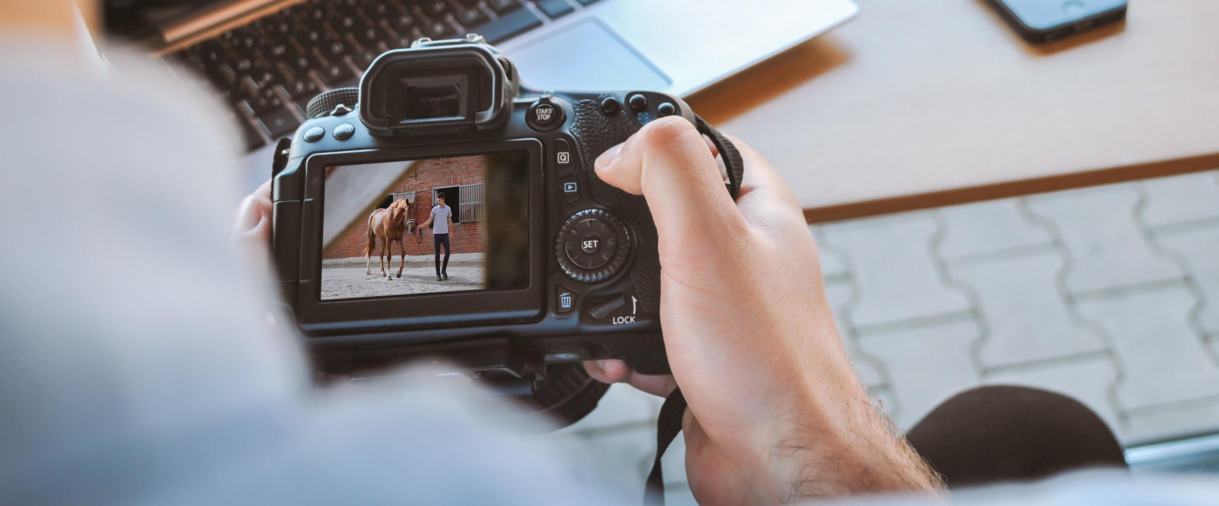 Person hält Kamera in der Hand und schaut sich ein Bild an