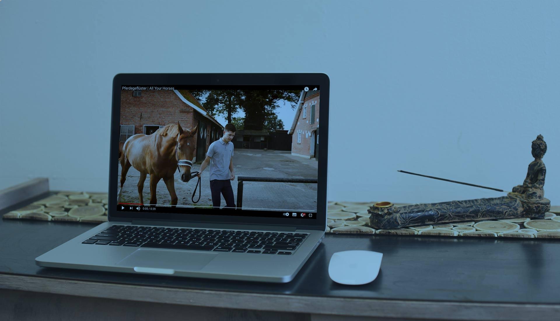 Video wird auf einem Laptop dargestellt