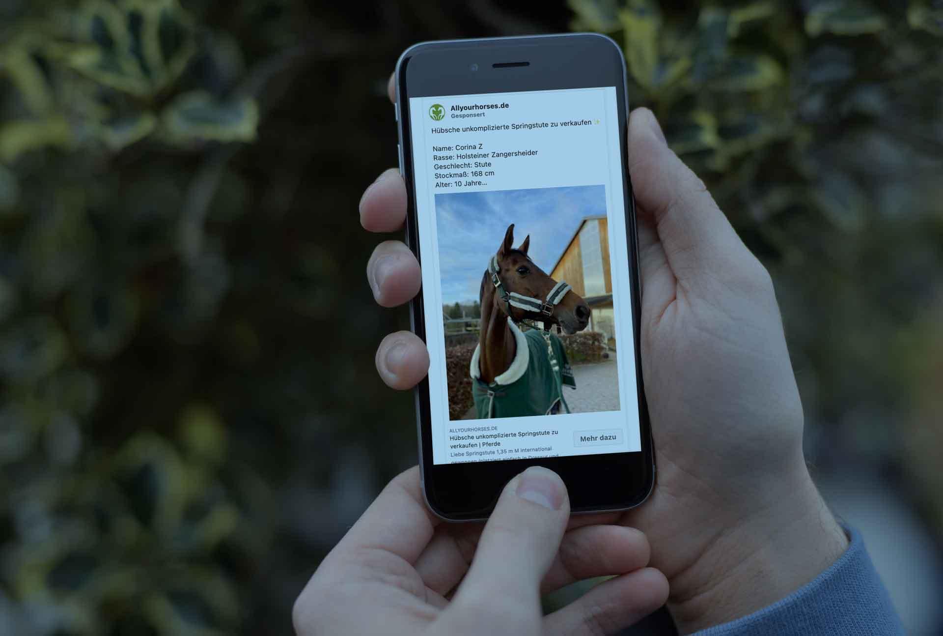 Referenz All Your Horses wird auf einem Mobilgerät dargestellt.
